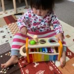 【トイサブの最新レビュー】知育玩具のレンタルサービス【3回体験中】